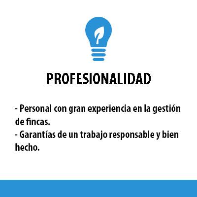 PROFESIONALIDAD_blanco