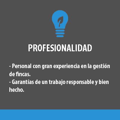 profesionalidad_gris